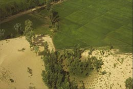 The desert pushes relentlessly against agricultural land near Yulin, China.