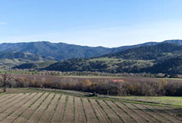 Composite panorama of a field near the Santa Inez Mission, Solvang, California.
