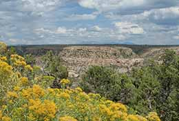 Landscape near Mesa Verde, Colorado.