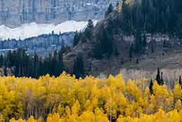 Mt. Timpanogos and fall colors on the Alpine Loop, Utah.