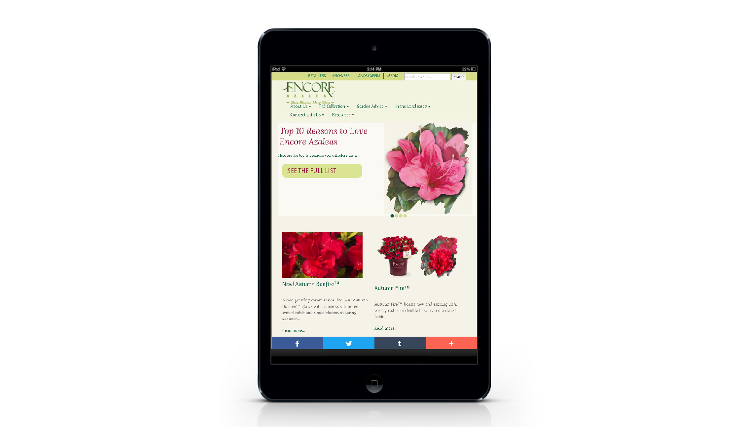 Encore Azalea tablet view