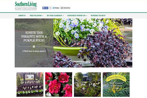 Southern Living Plants Redo